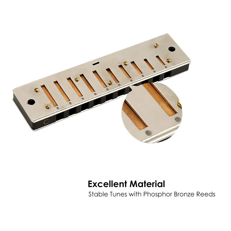Mugig Armonica a bocca BLUES 10 fori, C Key Coperta d'acciaio inossidabile colore nero classico, consegna con custodia, adatto per i principianti
