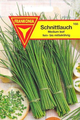 Allium schoenoprasum 200 Samen Schnittlauch