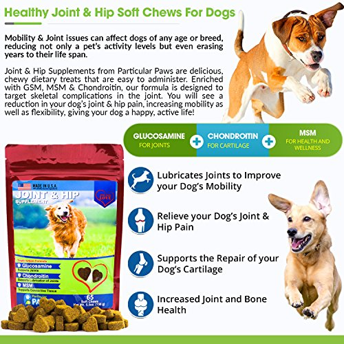 Glucosamine for Dogs - Treats - Joint & Hip Formula with MSM, Chondroitin and Hyaluronic Acid - 65 Soft Chews by Particular Paws (Image #3)