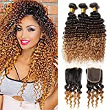 Hairitory Hair Peruvian Kinky Curly Virgin Hair With Closure Ombre 3 Bundles Deep Wave Human Hair Weave With Lace Closure # 1b 4 27 (20with22 24 26, 1B/4/27)