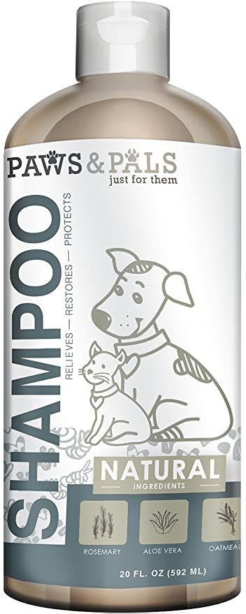 Amazon paws pals natural oatmeal dog shampoo and conditioner paws pals natural oatmeal dog shampoo and conditioner 20oz medicated clinical vet formula solutioingenieria Gallery