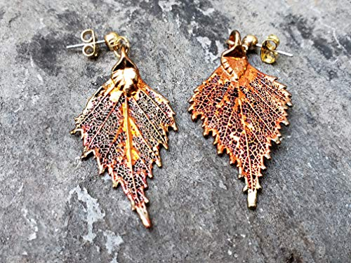 COEW Iridescent Copper Dipped Real Oak Leaf Wire Hook Earrings Nature Jewelry