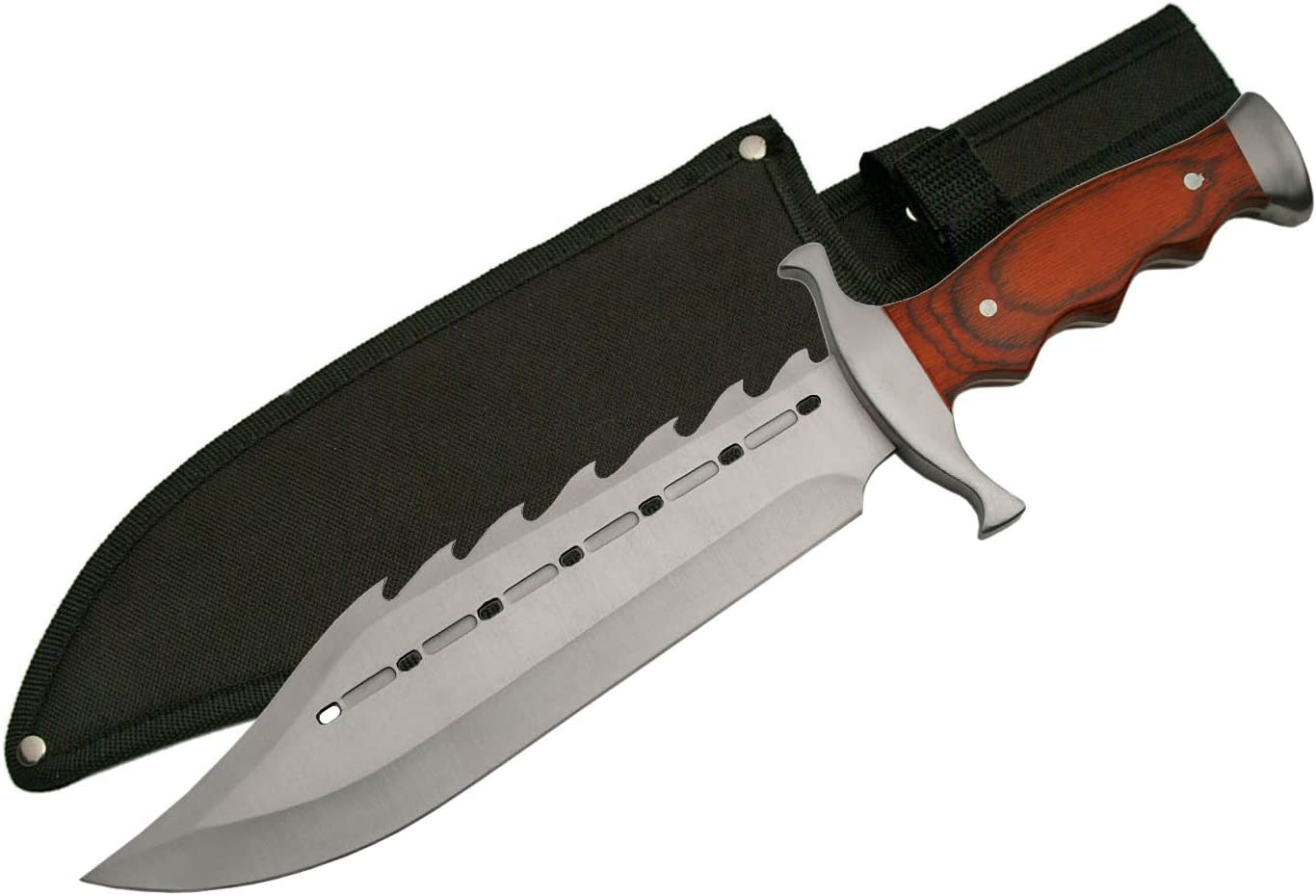 SZCO Supplies 211398 Gator Back Bowie Knife Stainless Steel Skinning Knife