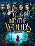DVD : Into The Woods (Theatrical)