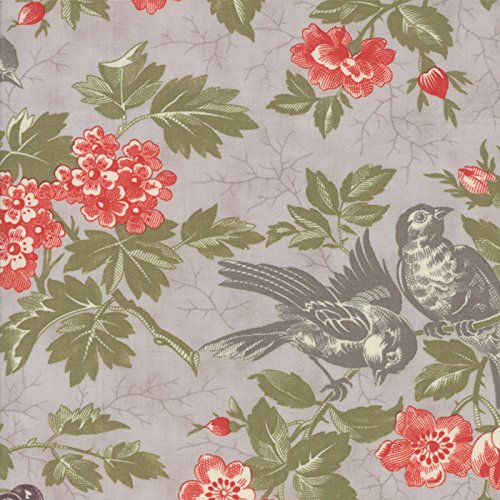 Contemporary Floral, Coral, Gray, Green, Quill, 3 Sisters, Moda, By the Yard ()