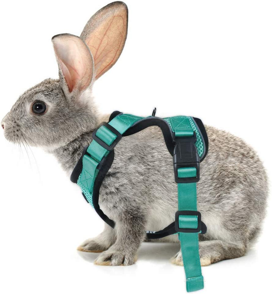 Escape Proof for Small Medium Cats rabbitgoo Cat Harness for Walking Safe Outdoor Cat Jacket with Reflective Strips /& 1 Metal Leash Ring Adjustable Vest Harnesses Small Cats Soft Mesh Harness