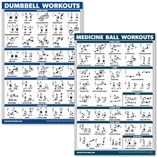 QuickFit 2 Pack - Dumbbell Workouts and Medicine Ball Exercise Posters - Set of 2 Laminated Charts - Dumbbell and Medicine Ball Exercise Routine (Laminated, 18
