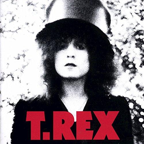 T-rex Vinyl - The Slider