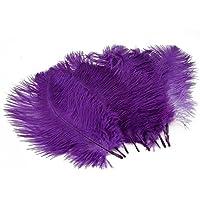 10pcs Home Decor Purple Ostrich Feathers Purple
