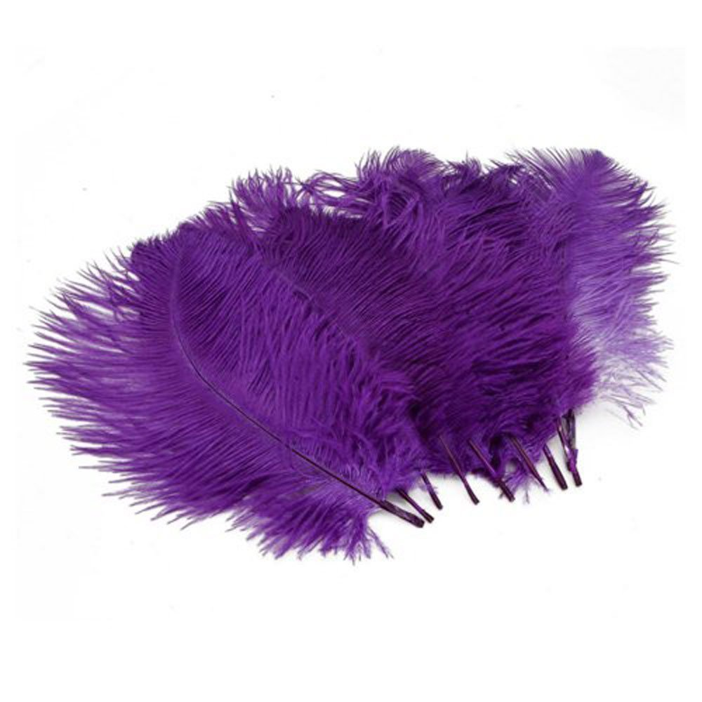 10pcs Home Decor Purple Ostrich Feathers Purple Leegoal SHOMAGT24462