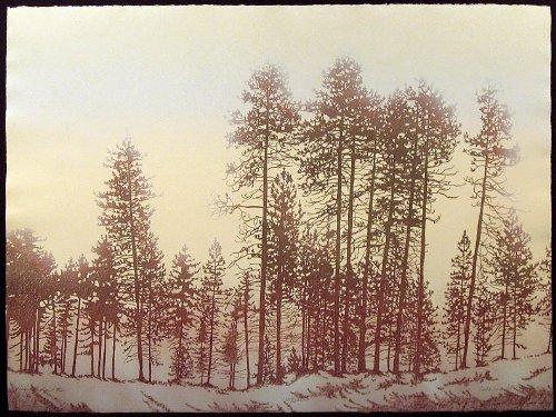 Pine Ridge II by