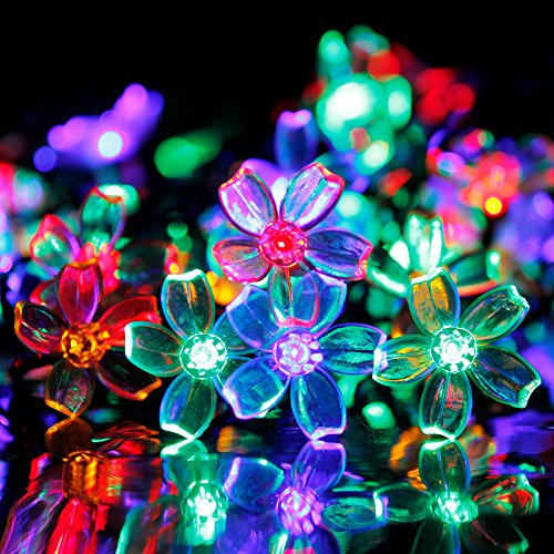 Garden Gnome String Lights - 2