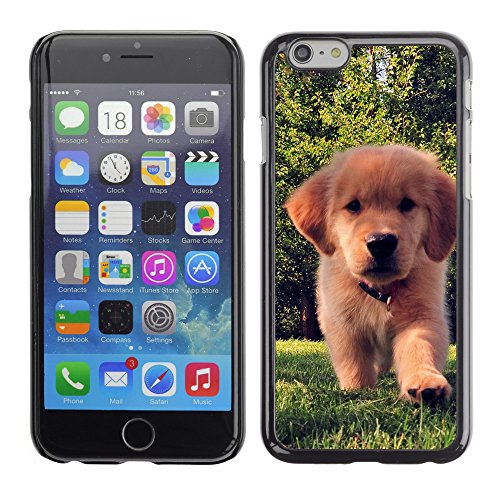 Premio Sottile Slim Cassa Custodia Case Cover Shell // V00003237 chien 9 // Apple iPhone 6 6S 6G 4.7""