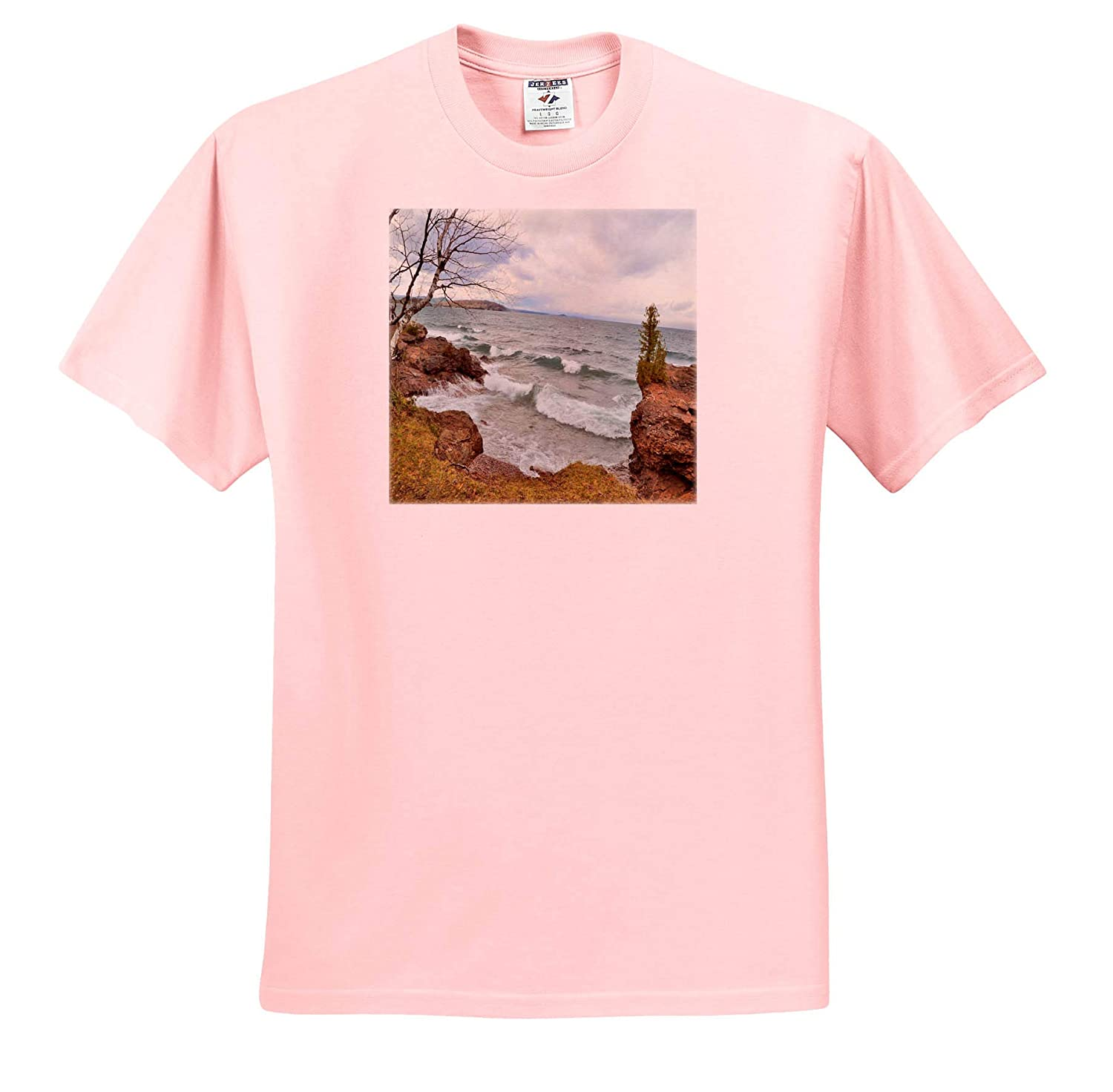 3dRose Dreamscapes by Leslie ts/_314261 Scenery Lake Superior Waves in November Adult T-Shirt XL