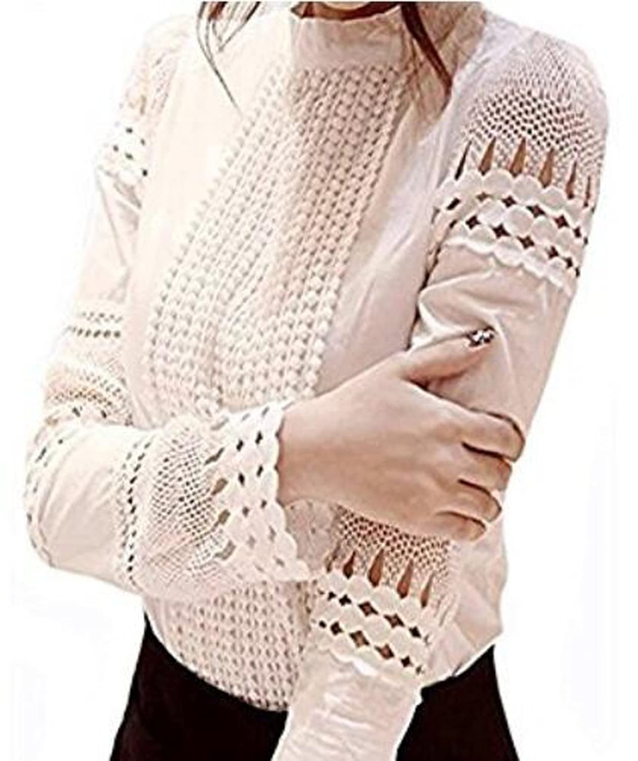 Cottagecore Clothing, Soft Aesthetic Lace Long Sleeve Elegant Blouse $14.99 AT vintagedancer.com