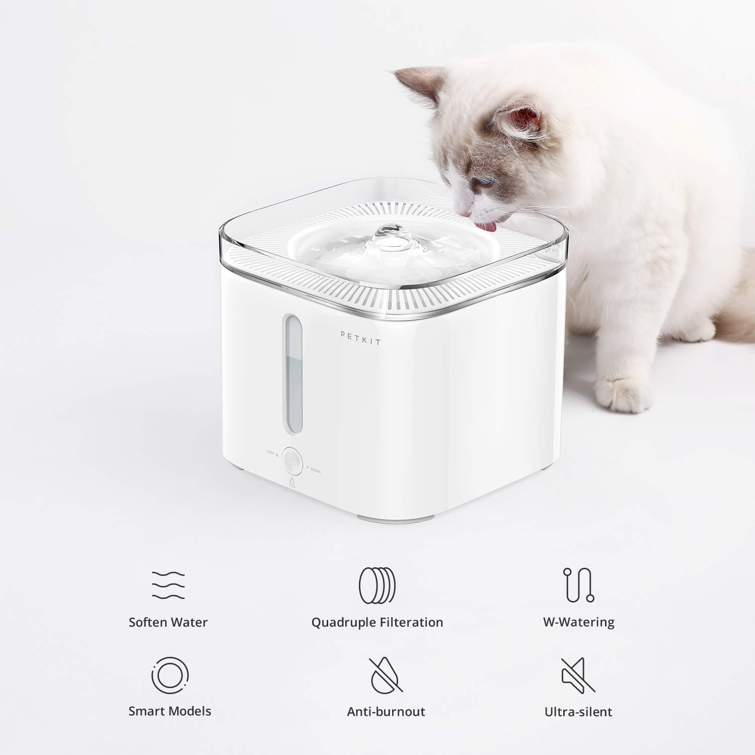 PETKIT EVERSWEET Cat Water Fountain 2.0, 2L Automatic Pet Water Fountain for Dog and Cat Super Quiet with Water-Shortage Alert and Filter-Change Reminder, Auto Power-Off Pet Water Dispenser by PETKIT (Image #3)