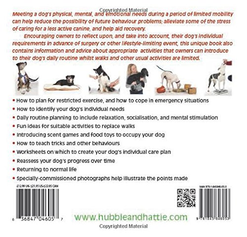 No walks? No worries!: Maintaining wellbeing in dogs on restricted ...