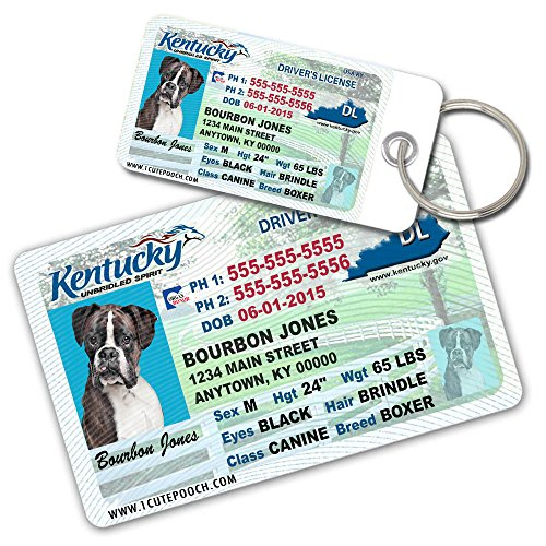 License Pet Tag - Kentucky Driver License Custom Dog Tags for Pets (2) and Wallet Card - Personalized Pet ID Tags - Dog Tags For Dogs - Dog ID Tag - Personalized Dog ID Tags - Cat ID Tags - Pet ID Tags For Cats