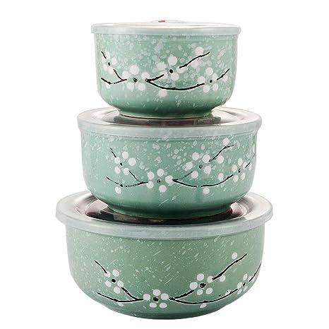 Amazon.com: Juego de cuencos de cerámica estilo japonés ...