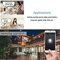 No Se Requiere Hub Decdeal Inteligente Regulador de Intensidad de Luz Compatible con  Alexa Google Home Echo Voice Control Superficie Vidrio T/áctil Apoyo WiFi App Control Remoto