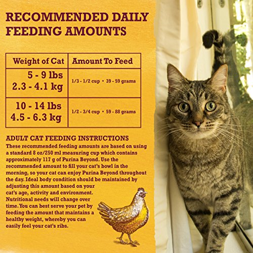Purina Beyond Natural Limited Ingredient Dry Cat Food, Simply White Meat Chicken & Whole Oat Meal Recipe - 13 lb. Bag