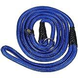 """Tinksky 150cm 59"""" cane resistente Nylon regolabile ciclo formazione guinzaglio Slip collare piombo trazione corda (blu)"""