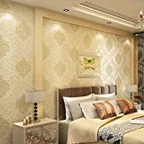 Non-Woven 3D Wallpaper, Print Embossed, Modern Stripe Fashion Wallpaper for Livingroom, Bedroom, Kitchen and Bathroom (TypeA Beige2)