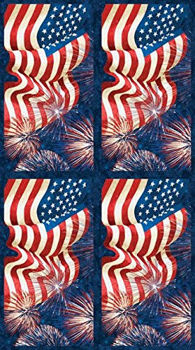 Stonehenge Celebration 6 American Flags On Panel With Fire Works Northcott Cotton Fabric 20642-49 -