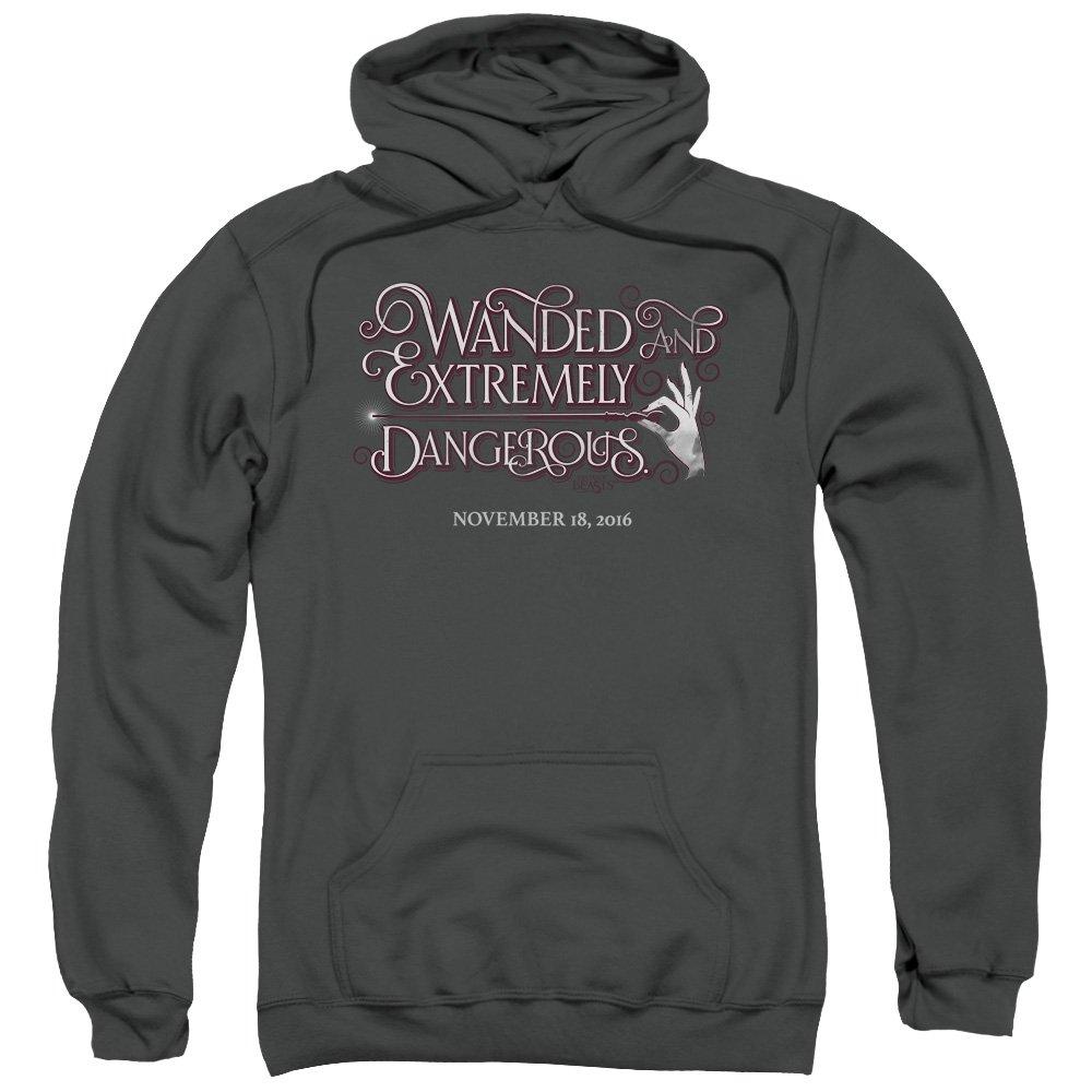 Fantastic Beasts - - Männer-Pullover mit Kapuze