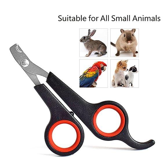 Cortauñas para perro o gato - Mejor cortauñas para gato y gato - cortador de uñas y cortador de uñas para perros pequeños, gatos, conejos, pájaros, ...
