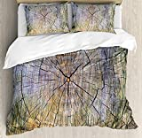 Full Size Rustic 3 PCS Duvet Cover Set, Annual Rings of Wood Growth Aging Theme Dirty Inner Tree Body Branch Whorls Width Design, Bedding Set Bedspread for Children/Teens/Adults/Kids, Brown