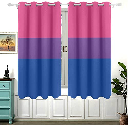 JXCSGBD 2 Panels Women Window Curtains Bisexual Sexuality Flag Love Floor Window Curtain 63×55 Inch 160x140cm Insulated Grommet Blackout