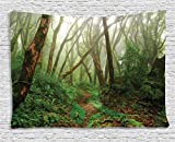 Ambesonne Forest Tapestry, Spooky Tropical Exotic Fog Jungle in Rainforest Nepal Climate Picture Print, Wide Wall Hanging for Bedroom Living Room Dorm, 80' X 60', Green Brown