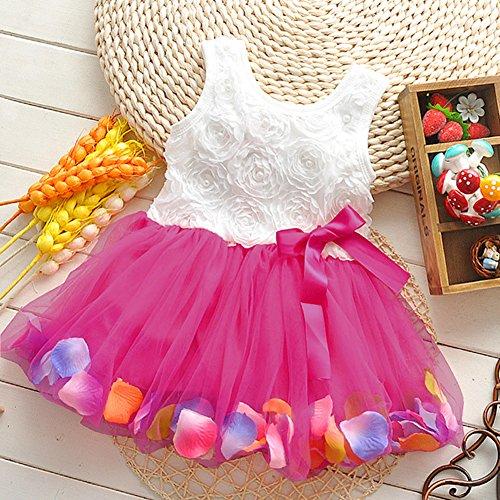 Fairy Season Baby Girl Princess Party Lace Sleeveless Rose Flower Petal Ruffled Dress (3-4 years, Rose Red)