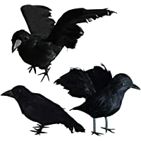 FUNPENY Halloween Black Feathered Crows, 3 Pack Black Crows with Real Feather Halloween Decoration for Indoor Outdoor