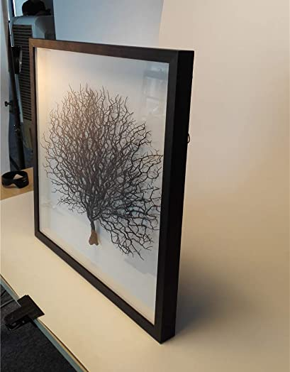 WAF 24 X24 x1 3 5 Modern Wall Decor Withered Branch Contemporary Tree Sculpture 3D Shadow Box Front Glass Cover Home Gift Framed Wall Art Ready to Hang Black W Black Frame