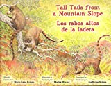 Tall Tales from a Mountain Slope
