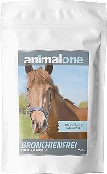 Migliori 7 Integratori alimentari per cavalli