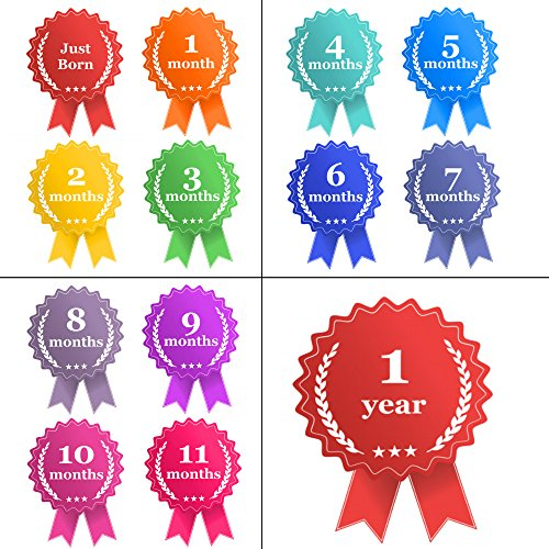 BABY MONTHLY STICKERS KIT by nl_HappyBabies for boy and girl, Unique & Cool baby shower gift for Memorable keepsake, Registry & Decorations, album&Decor. Original Ribbon of first year milestones award