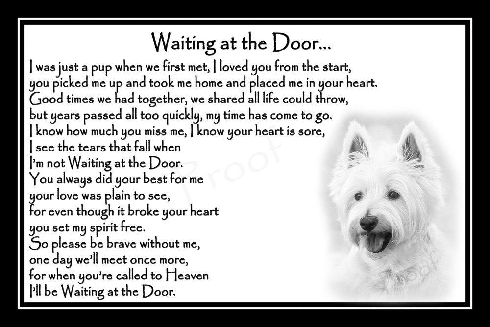 Westie Pet Dog Bereavement Sympathy Memorial Print (unframed) - Waiting at the Door