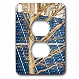 3dRose Alexis Photography - Objects - Young leafless oak tree and a solar power panel. Both turned sunward - Light Switch Covers - 2 plug outlet cover (lsp_283847_6)