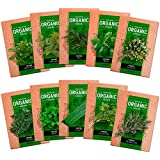 10 Culinary Herb Seed Vault - Heirloom and Non GMO - 1600 Plus Seeds for Planting for Indoor or Outdoor Herbs Garden, Basil, Cilantro, Parsley, Chives, Thyme, Oregano, Dill, Marjoram, Mint, Tarragon