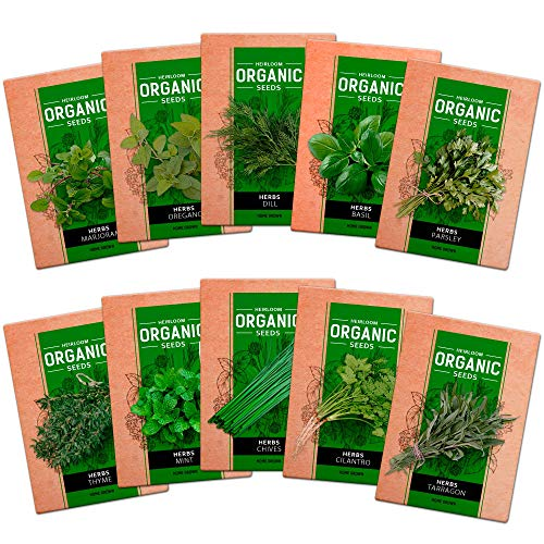 10 Culinary Herb Seed Vault - Heirloom and Non GMO - 3000 Plus Seeds for Planting for Indoor or Outdoor Herbs Garden, Basil, Cilantro, Parsley, Chives, Thyme, Oregano, Dill, Marjoram, Mint, Tarragon by homegrown