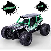 STOTOY 1/16 Scale 2WD 2.4Ghz High Speed Off Road Monster RC Truck