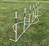 Six 1'' Weave Poles with Guide Wires