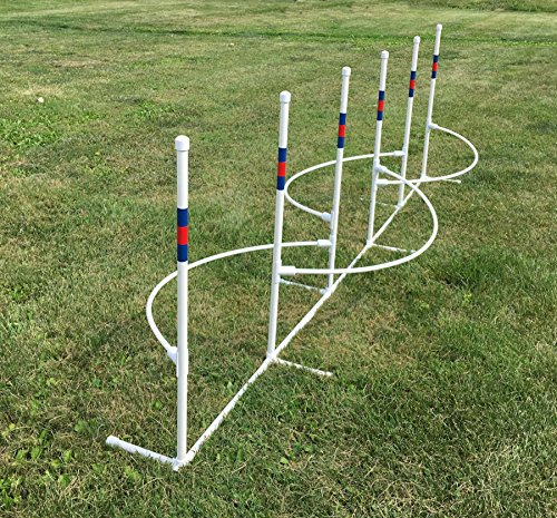 Six 1'' Weave Poles with Guide Wires by Agility by Carlson