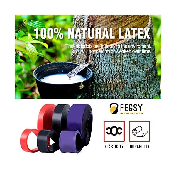 FEGSY-Resistance-Bands-for-Exercise-Workout-and-Stretching-for-Men-and-Women-Pull-up-Bands-with-Door-Anchor-Workout-Guide-and-Carrying-Bag
