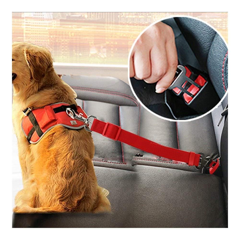 HAIKOU - Cinturón de Seguridad para Perros y Mascotas con Clip ...