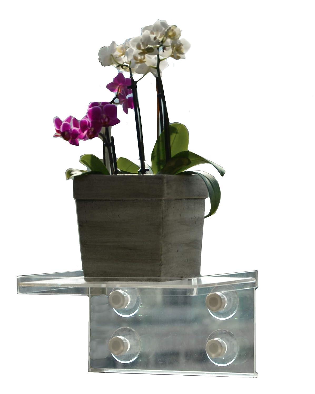 LaBrinx Designs Extra Deep Window Sill Suction Cup Shelf