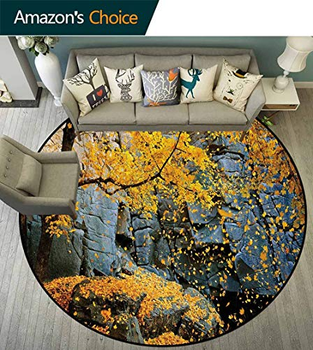Leaves Luxury Round Area Rugs,Canadian Maple Trees Falling Leaves Down Surrounded By Scenic Rocks Stones Foliage Super Soft Living Room Bedroom Carpet Woman Yoga Mat Diameter-39 Inch,Grey Orange